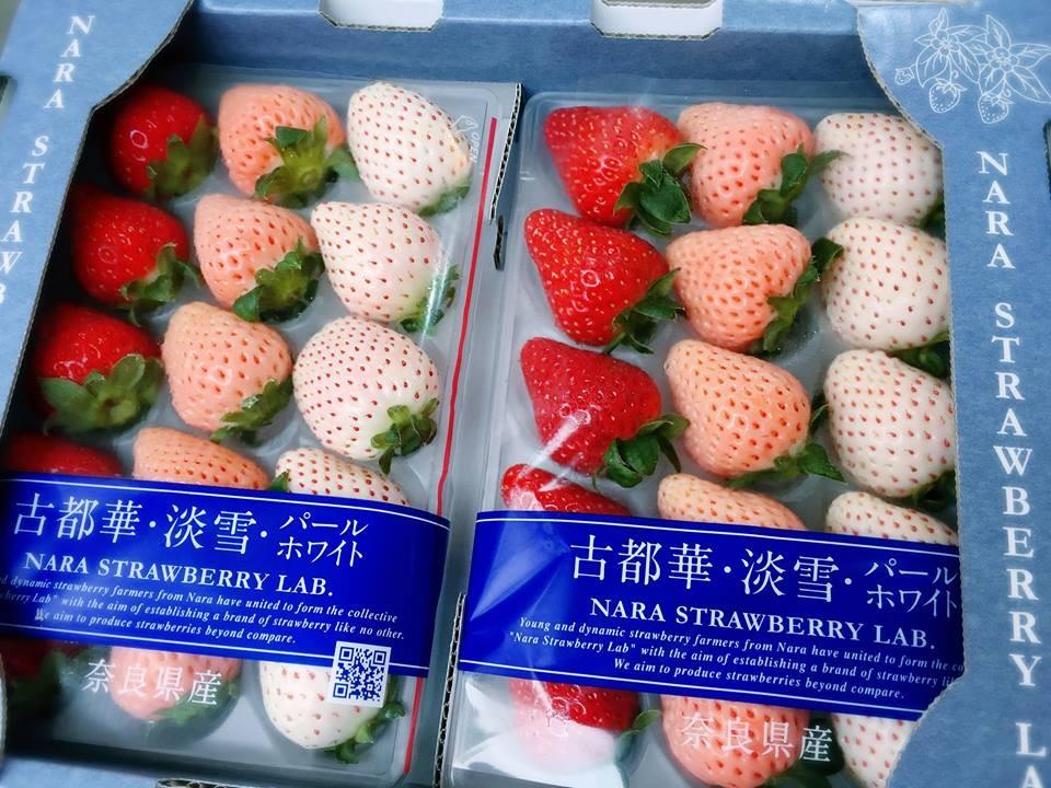 日本奈良古都華三色草莓(約22~30玉)限量供應請來電