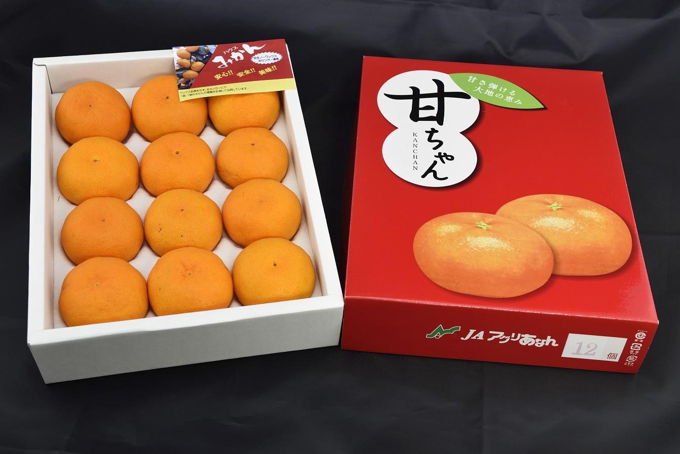 【大會限定特價商品】日本和歌山蜜柑禮盒(12玉/盒)