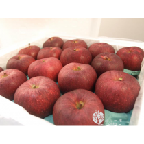 日本青森大紅榮蘋果禮盒6粒裝