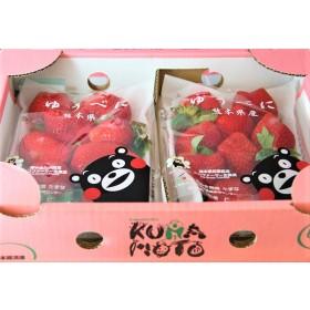 日本熊本草莓(一盒18-20玉)熊本熊